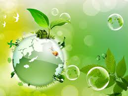 Environmental science and protection